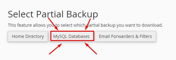 Selecting MySql Databases partial backup in Backup Wizard